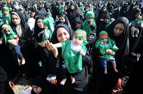 ابراز ارادت شیرخوارگان حسینی به دردانه سیدالشهدا(ع) در ایران و ۴۰ کشور جهان+عکس