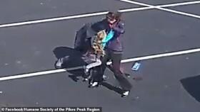 حمله هولناک سگ وحشی به دختربچه ۵ ساله
