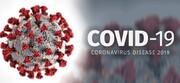 اما و اگرهای یک ویروس شناس دربارهکروناویروس